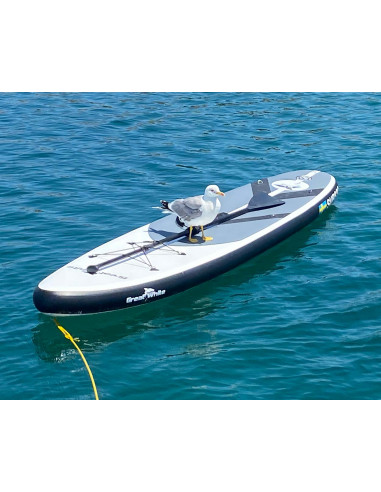 Paddleboard SUP330 från Greatwhite